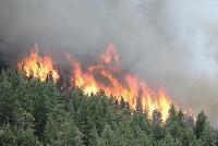 В Красноярском крае продолжают гореть леса…