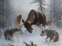 Охотинспектор – волк в овечьей шкуре?
