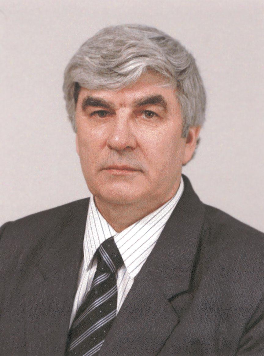 Анатолий Мамаев: «Нам обещали золотое дно и небо в алмазах»