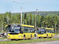 Жёлтые автобусы – всё, приехали