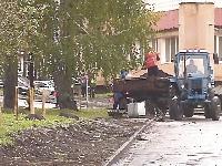 Бульвар на Ленинградском: кусты надо защитить