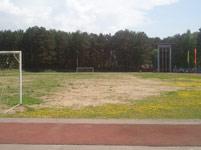 Футбольное поле или облезлая клумба?