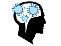 Карантин головного мозга