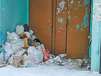Мусорная реформа: Новый год с контейнером под боком
